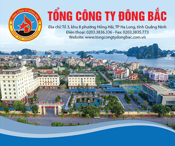 banner-tong-cong-ty-dong-bac