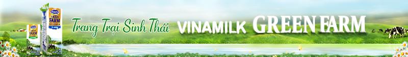 banner-top-800x112-vinamlik